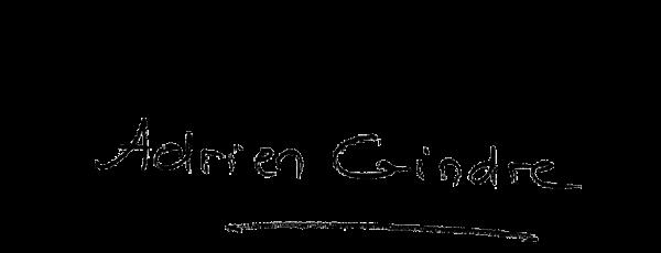 Visuel de la signature d'Adrien Gindre, journaliste sur LCI : En toute Franchise