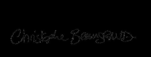 Visuel de la signature de Christophe Beaugrand, présentateur sur TF1 : Big Bounce, Ninja Warrior