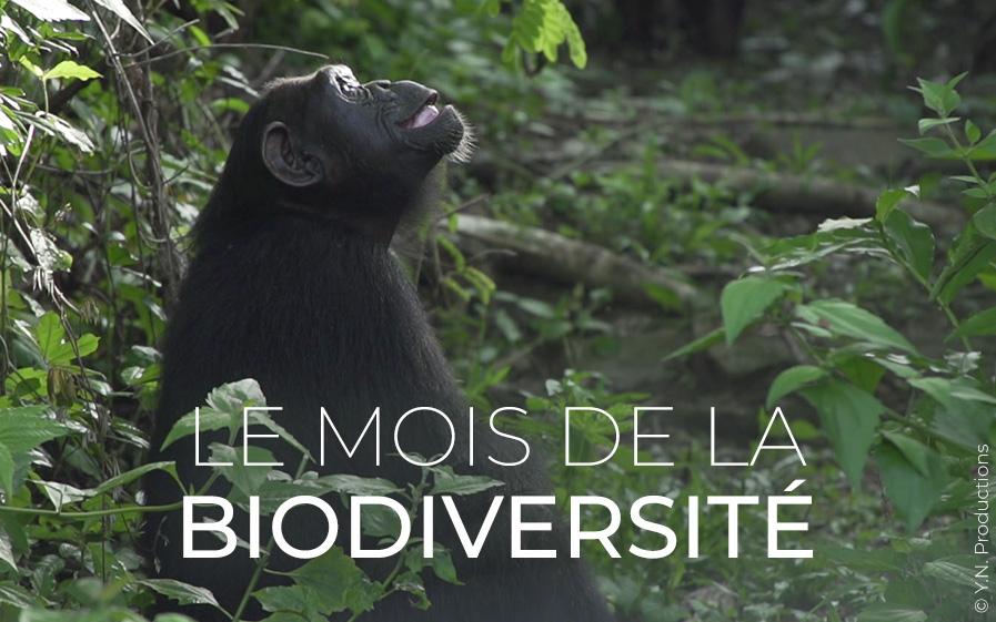 mois-de-la-biodiversite.jpg
