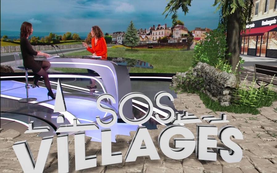 sos-villages-11ème-édition-Dominique-Sempère-Lagrou-tf1-et-vous.jpg