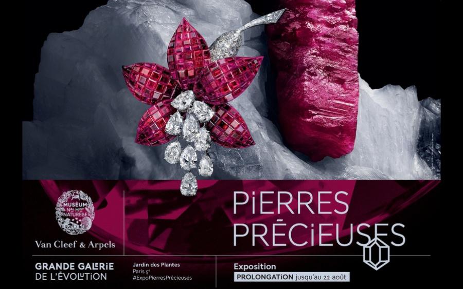 Exposition Pierres Précieuses-Grande Galerie de l'Evolution